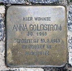 Photo of Anna Goldstrom brass plaque