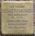 Stolperstein für Elisabeth Salinger (Potsdam).jpg