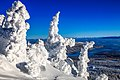 Sun Peaks Ski Resort - more shots amongst the snow ghosts (13653365003).jpg