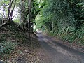 Sunken Road to Riverhill - geograph.org.uk - 258261.jpg
