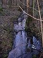 Swelina-3905r-pl.jpg