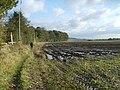 Swindon Rough - geograph.org.uk - 1038081.jpg