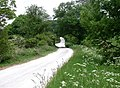 Swinescaif Road - geograph.org.uk - 829215.jpg