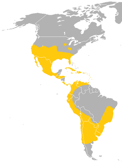 Range of the Mexican free-tailed bat