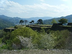 Takeda Castle 2011 10