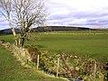 Terrydoo Clyde - geograph.org.uk - 730834.jpg