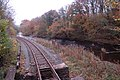 The Afon Banwy and the railway - geograph.org.uk - 1560665.jpg
