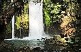 The Banias Waterfall מפלי הבניאס.jpg