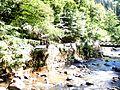 The Borjomula River in the Borjomi Park 1.JPG