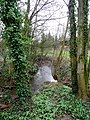 The Ell Brook by Cleeve Mill - geograph.org.uk - 1200515.jpg