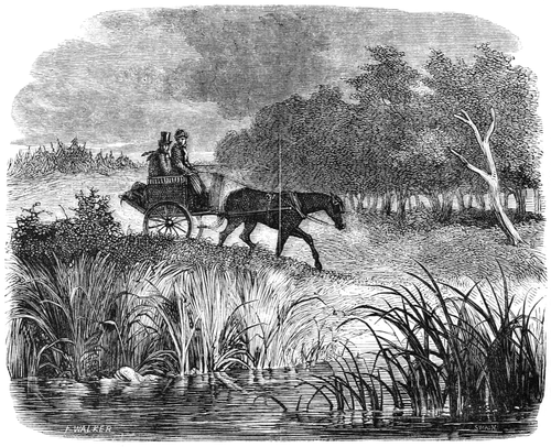 alt = In the foreground, the shore of a sedgy lake; beyond it, an open carriage drawn by a dark horse, with two people in it looking at the lake apprehensively. The light is dim, the sky oppressive.