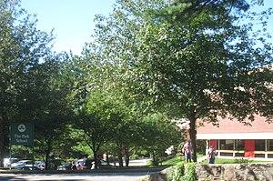 The Park School - The Park School