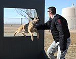 The protectors, Working with man's best friend 120316-F-YG475-100.jpg