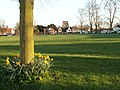 The village green at Writtle - geograph.org.uk - 1237568.jpg