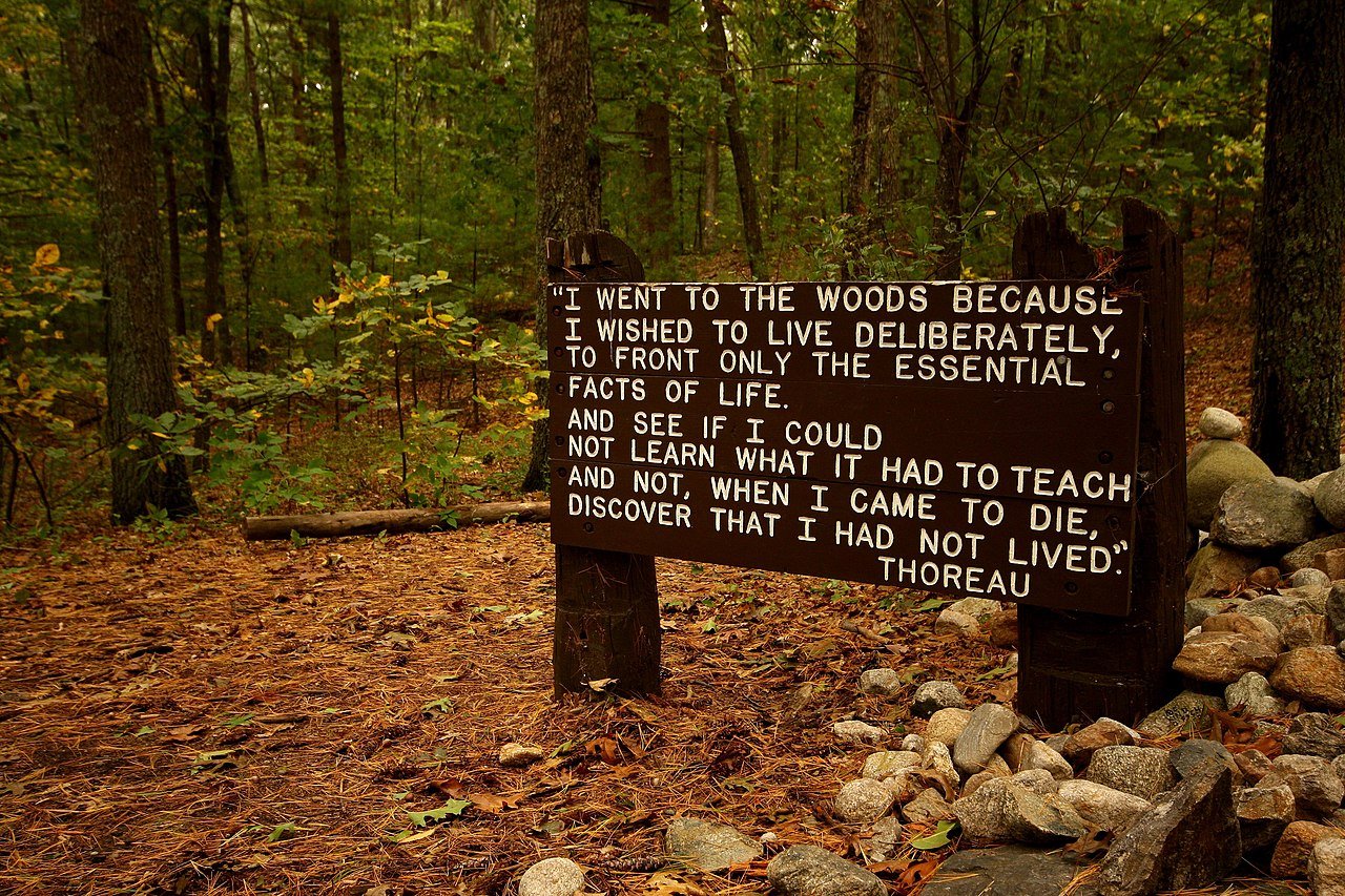 an analysis of henry david thoreaus view on life in nature 'twixt every page my thoughts go stray at large  think of our life in nature, —  daily to be shown matter, to come in contact with it, — rocks, trees, wind on our  cheeks  as published in the correspondence of henry david thoreau (1958),  p  the most accurate analysis by the rarest wisdom is yet insufficient, and the  poet.