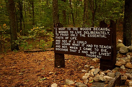 Thoreau's famous quotation, near his cabin site at Walden Pond Thoreaus quote near his cabin site, Walden Pond.jpg