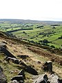 Thrope Edge, Nidderdale - geograph.org.uk - 573808.jpg