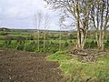 Tinklersford Townland - geograph.org.uk - 1018170.jpg