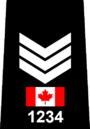 Toronto Police - Sergeant.png