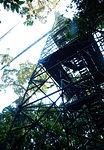 Tower-to-sky-bridge-ecuador-snd.JPG