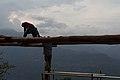 Trabajadores en el mirador del Río Suárez, Barichara.jpg