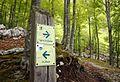 Trail sign in Slovenia.jpg