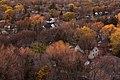 Trees (6366152571).jpg