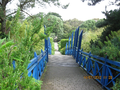 Tresco Abbey Garden - Blue Bridge.png