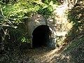Tunnel underneath railway line. - geograph.org.uk - 604217.jpg