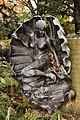 Twickenham, York House Japanese garden, Birth of Venus.jpg
