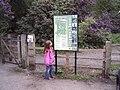 Twigmoor Woods - geograph.org.uk - 13678.jpg