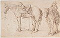 Two studies of a saddled horse and of a horse with a boy astride; verso- Study of a bean plant MET DP162134.jpg