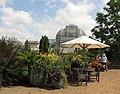 U.S. Botanic Garden in June (23499858300).jpg