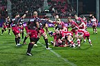 USO-Gloucester Rugby - 20141025 - Ruck 9.jpg