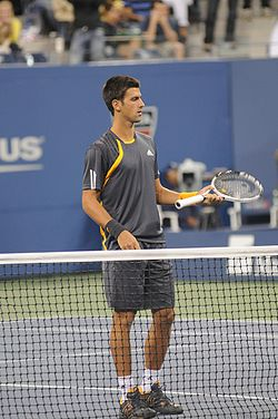 US Open 2009 4th round 288.jpg