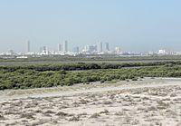 Umm Al Quwain mangroves (7267363924).jpg