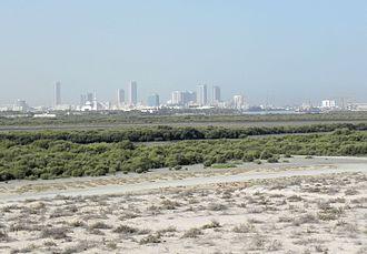Umm al-Quwain - Mangroves near Umm al-Quwain
