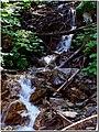 Un ruscello nel bosco - panoramio.jpg