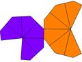 Unequal hexagonal trapezohedron net.png