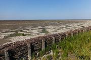 Uniek door eb en vloed steeds wisselend kweldergebied. Locatie, Noarderleech Provincie Friesland 008.jpg