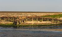 Uniek door eb en vloed steeds wisselend kweldergebied. Locatie, Noarderleech Provincie Friesland 017.jpg