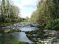 Untamed Tavy in Tavistock.jpg