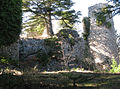 Vérignon Vieux Château 2012a.JPG