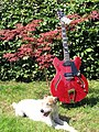 VGS Select Series Mustang VSH-110, Barnyard-Blues dog meets.jpg