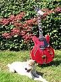 VGS Select Series Mustang VSH-110, Barnyard-Blues dog meets.jpg