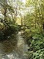 Valleyfield Wood - geograph.org.uk - 27958.jpg