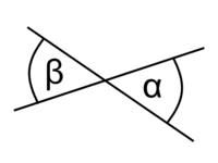 De två vinklarna är vertikalvinklar.