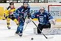 Vienna Capitals vs Fehervar AV19 -188.jpg