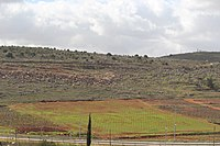 View from Tel Shiloh IMG 3007.JPG