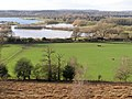 View west from Ibsley Common, New Forest - geograph.org.uk - 313833.jpg